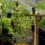 புத்தாண்டில் இரு பெண்கள் கொடூரமாக கொலை… வெளியான தகவல்